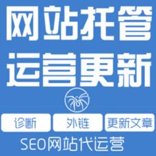 网站建设服务/网站搭建一条龙服务/服务器运维/网站托管